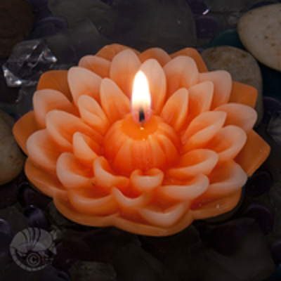 Dahlia Floating Candle by Armadilla Wax Works