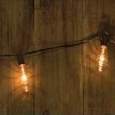 Edison Copper Strand of String Lights