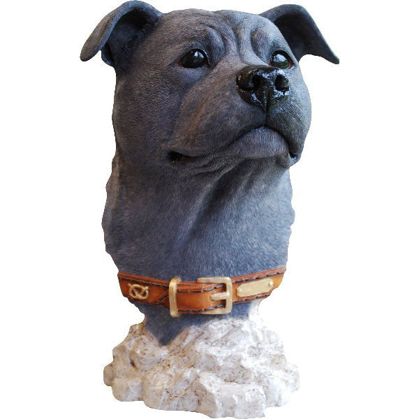 Staffordshire Bull Terrier Head Bust Blue