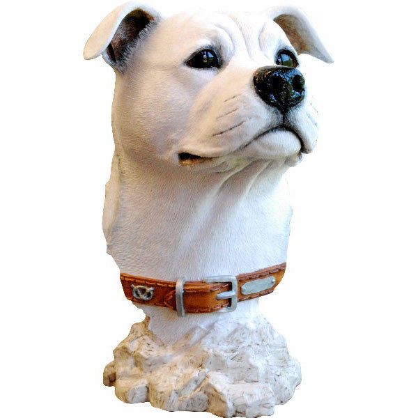 Staffordshire Bull Terrier Head Bust White