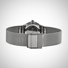 Skagen 355SMM1 Ladies Silver Stainless Steel Strap Quartz Watch