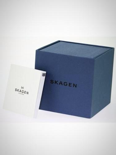 Skagen 233XLTTM Men's Titanium Grey Mesh Titanium Watch
