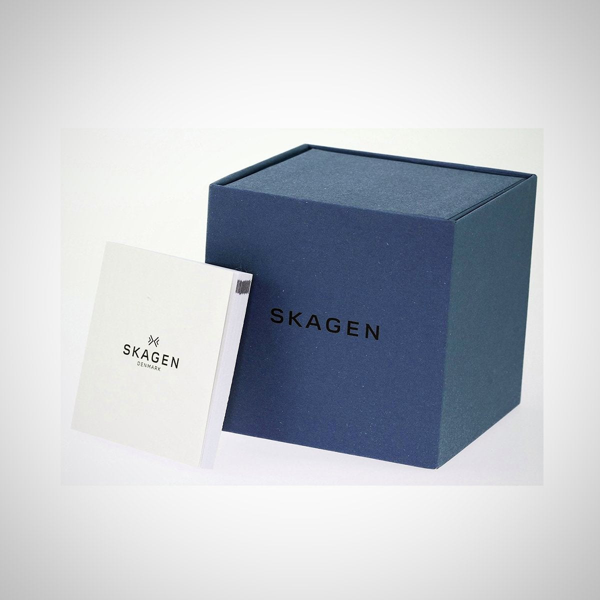 Skagen 380XSSS1 Ladies Classic Stainless Steel Mesh Watch
