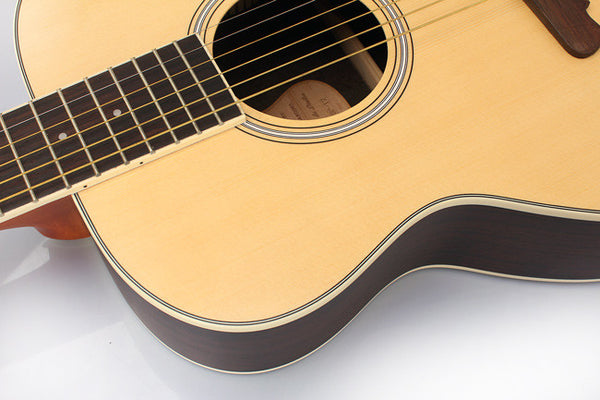 Alston Acoustic Guitar SP-12