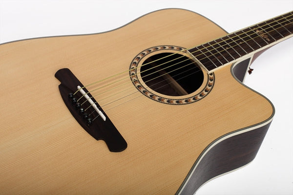 Alston Acoustic Guitar SP-30C