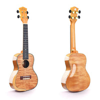 Alston UF-360 Concert Ukulele with Hardshell Case