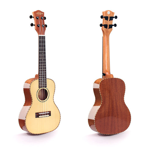 Alston UP-310 Concert Ukulele with Hardshell Case
