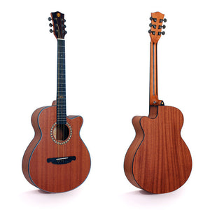 Alston Acoustic Guitar SP-15C