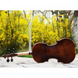 Violin V-Senior New Christina V08