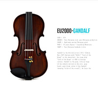Violin EU-series EU2000B