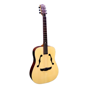 Dream Maker Electric Acoustic Guitar DM-100E  Hollow Body