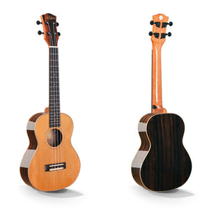 Alston UP-447 Tenor Ukulele with Hardshell Case