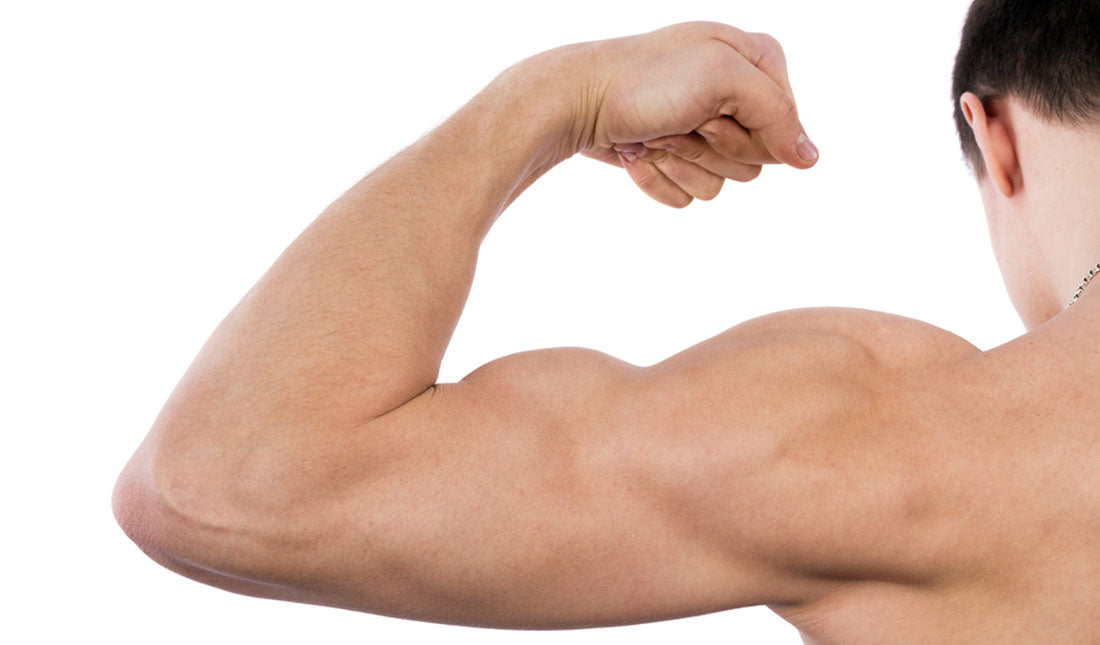 isolated bicep muscle flexing