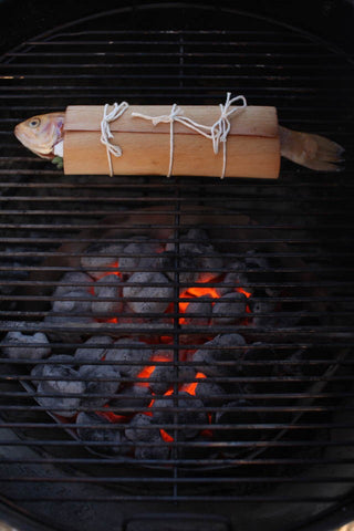 grilled-trout-in-wrap