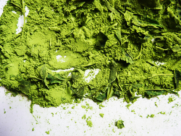 Your Guide To Matcha: What To Keep in Mind When Buying Matcha Green Tea