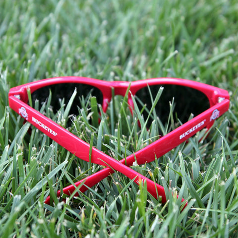 Ohio State Buckeyes Team Shades