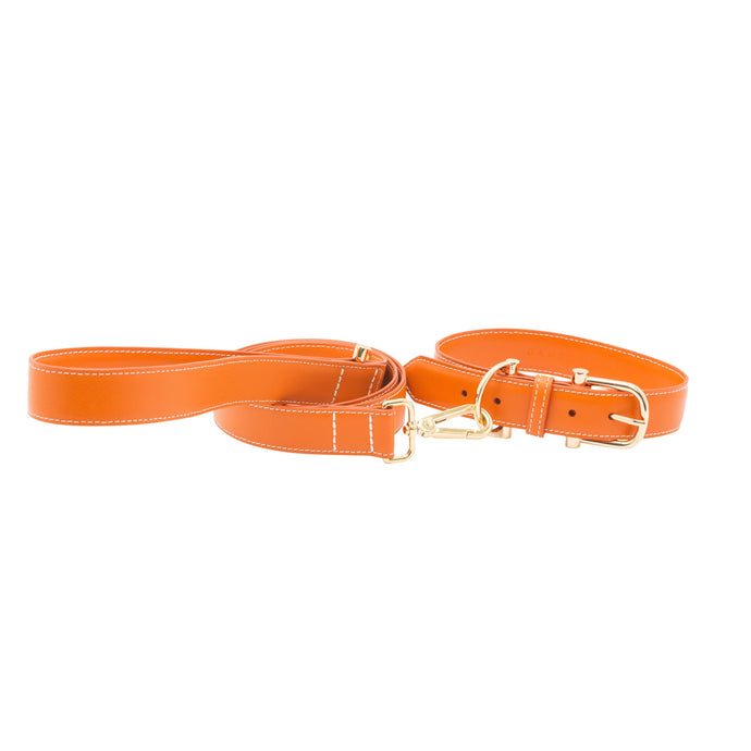 TOWN LEATHER COLLAR + LEASH SET - MORE COLORS AVAILABLE