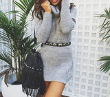 Plus Size Winter Mini Dress