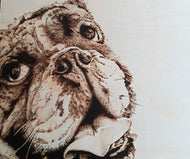 Pyrography by Lee Godman