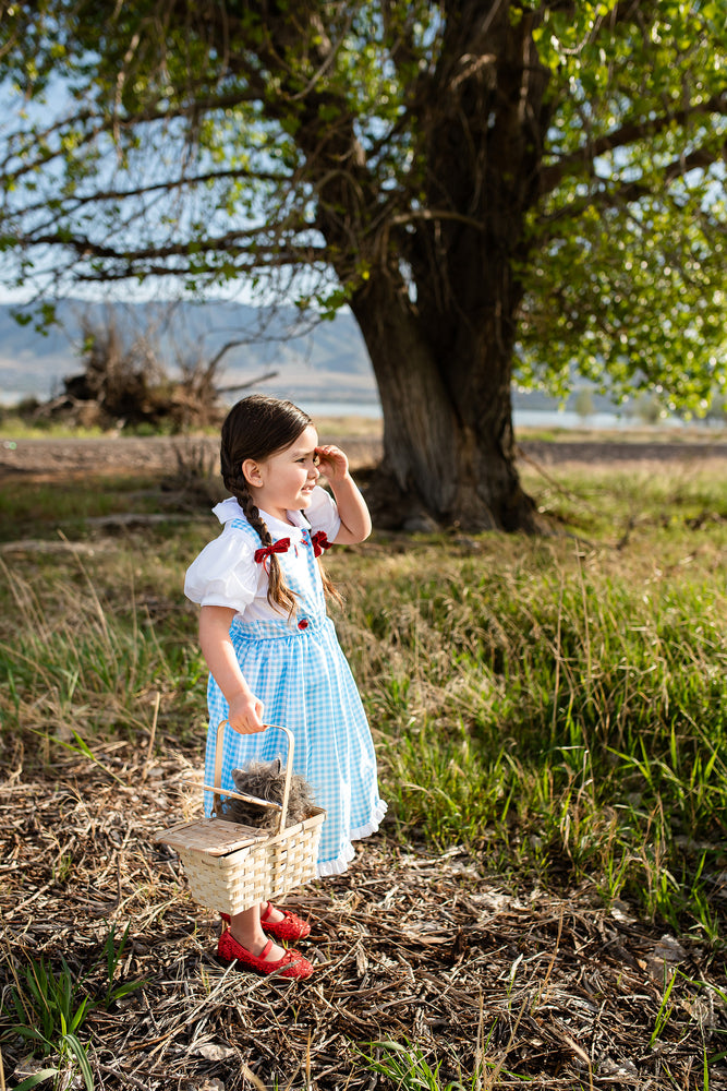 Kansas Girl with Bows (Larger Sizes Available)