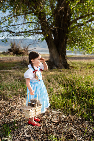 Kansas Girl with Bows
