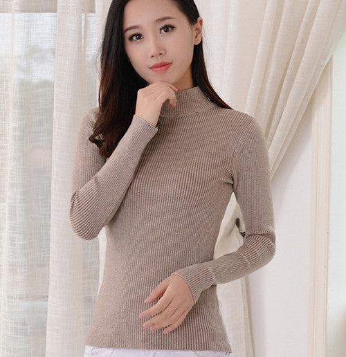 2016 Women Sweater Women fashion Slim Solid Autumn and Winter Knitted Warm Turtleneck Pullover Women Sweater - EnsoStore