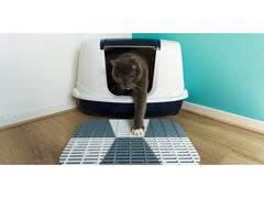 Litter Box Mat
