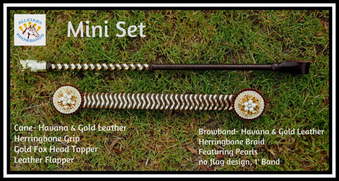 Mini Leather Browband & Cane Set