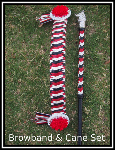 Tri- Colour Leather Browband  & Cane Set