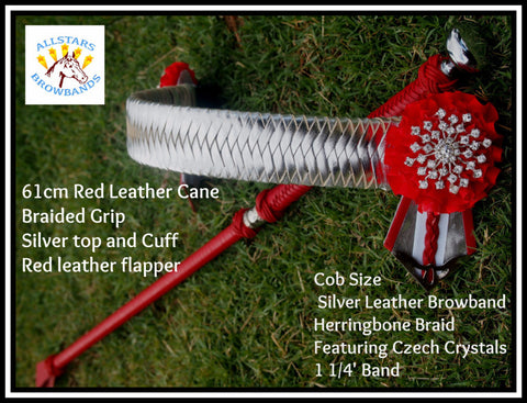 Silver Leather Browband & Cane Package