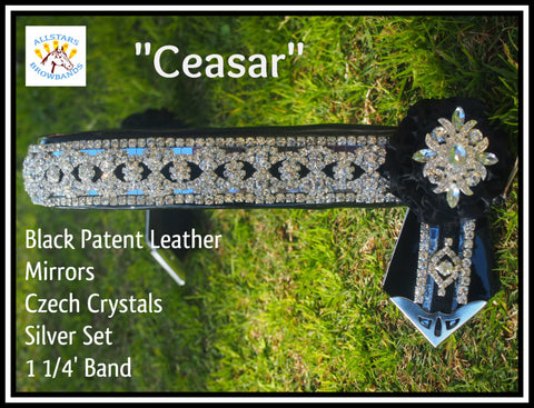 Ceasar In Stock