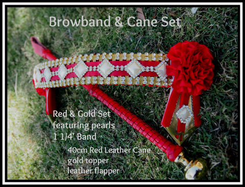 Tenisha Browband & Cane set