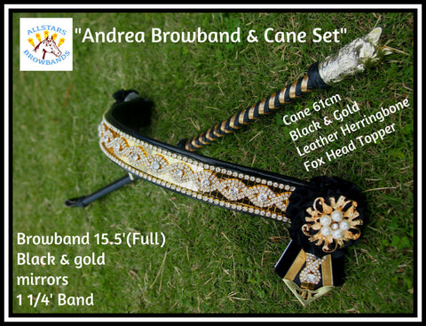 Andrea Browband & Show Cane Set