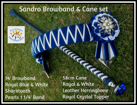 Sandro Browband and cane set instock in a Cob Size