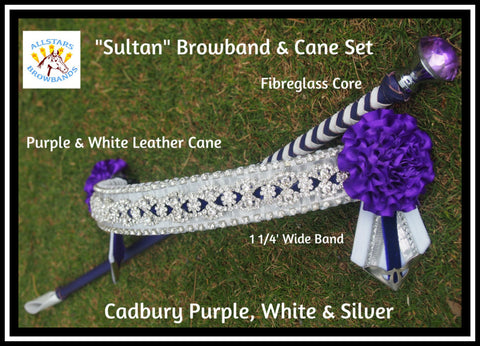 Sultan Browband and Cane Set