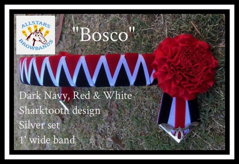 Bosco in stock pony