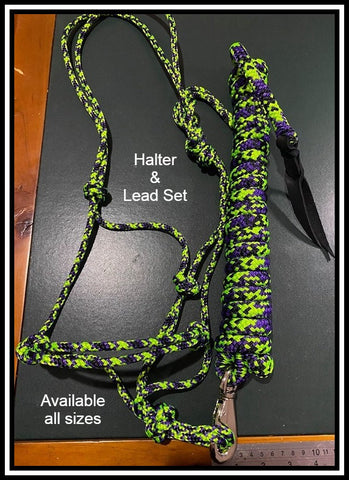 Lime and Purple Halter and training set