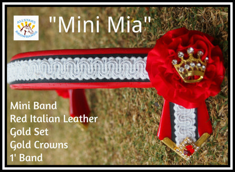Mini Mia  in stock 12'