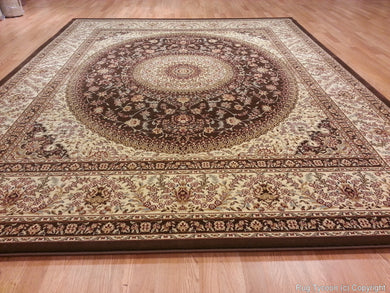 T03 Brown Area Rug