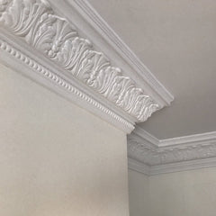 Plaster Coving Large Acanthus Leaf 165mm Drop LPC021 - PlasterCeilingRoses.com