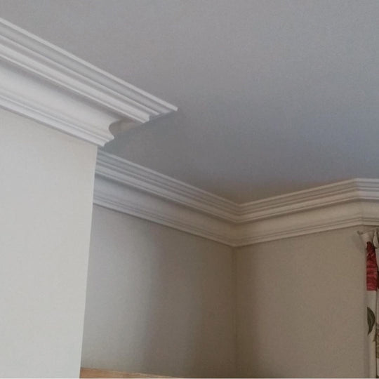 Plaster Coving Swan Neck 100mm MPC065