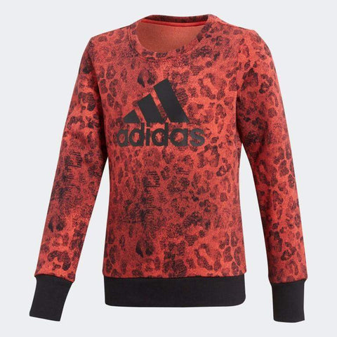 Adidas Essentials Graphic Kid's Training Sweatshirt-Mikka Online