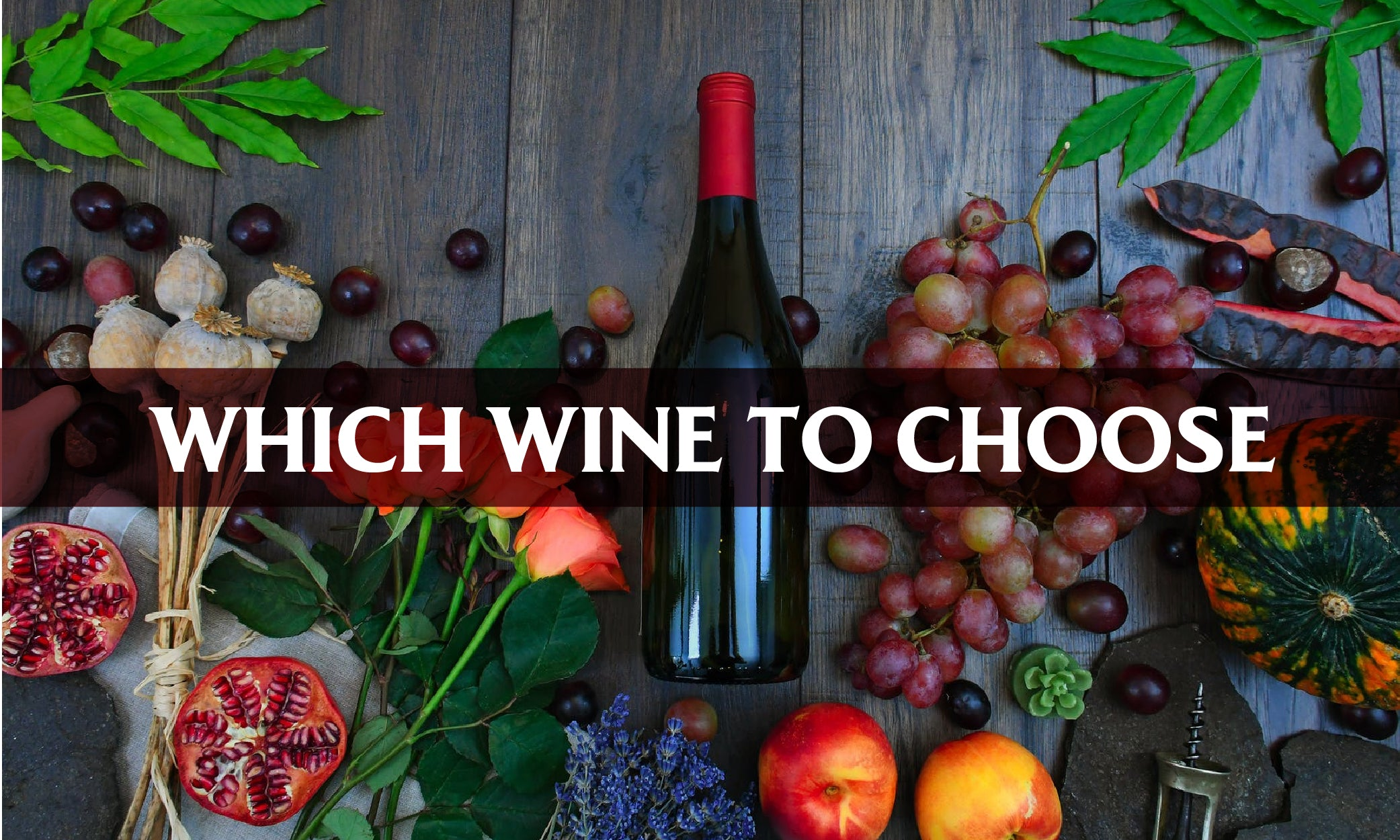 Which Wine to Choose? A Guide for Complete Beginners