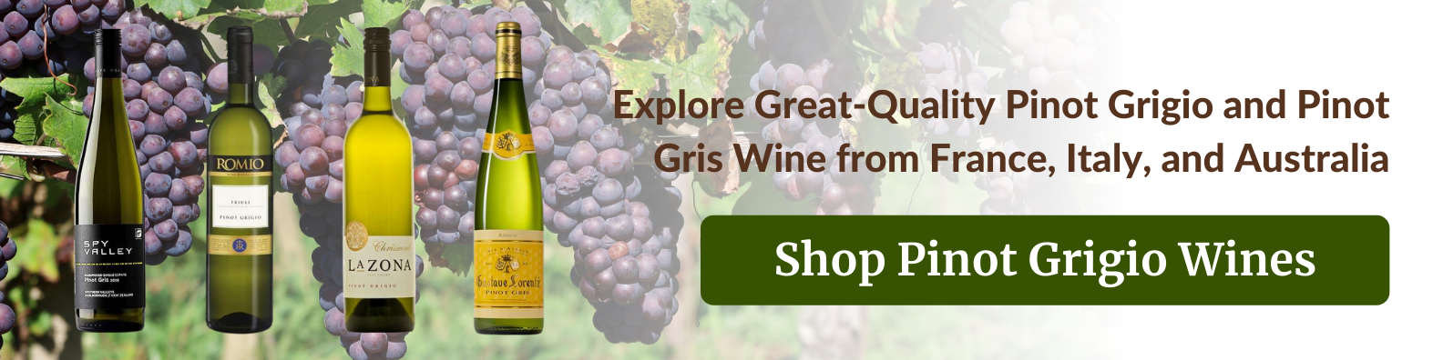 shop pinot grigio and pinot gris wines in the philippines at best prices