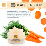 Health & Beauty - Moisturizer & Nourishing Carrot Facial Cream - DeadSeaShop.com