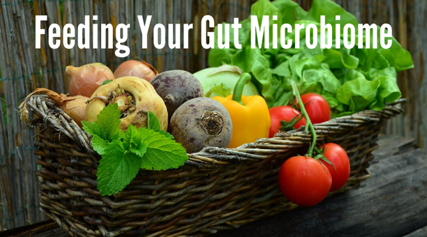 Feeding Your Gut Microbiome