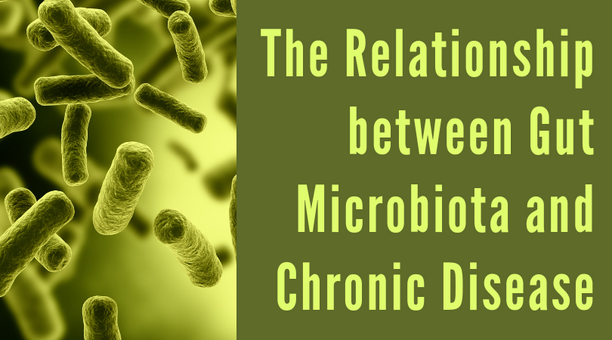 The Relationship Between Gut Microbiota and Chronic Disease