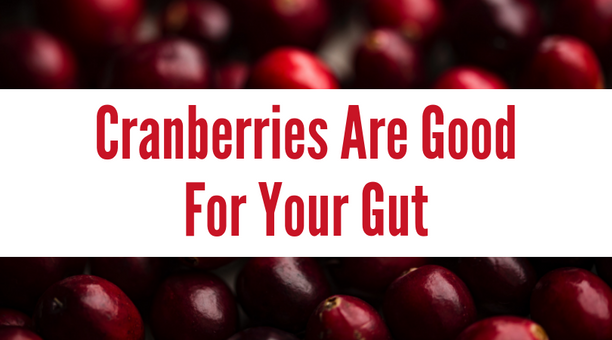 Cranberries Are Good For Your Gut