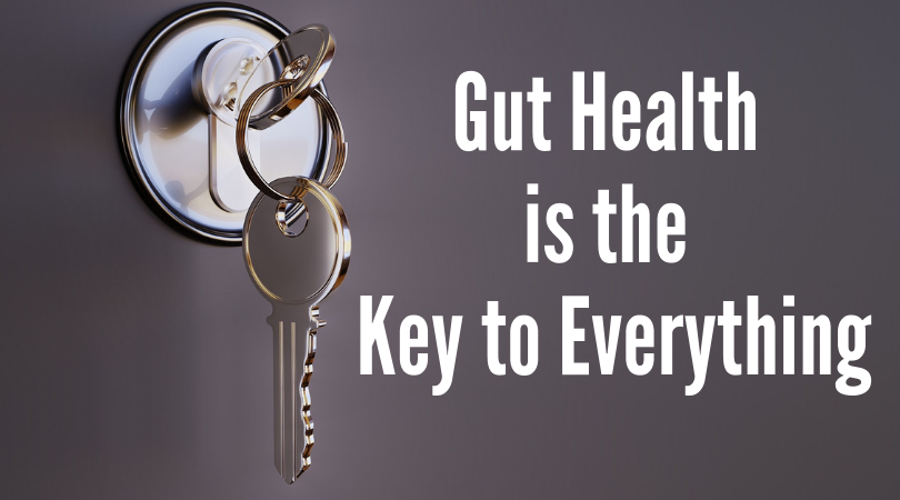 Gut Health Is The Key To Everything