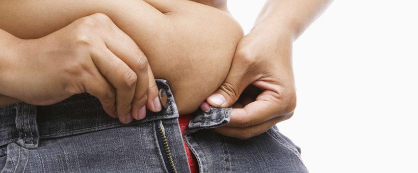 Changes in Gut Bacteria May be Linked to Obesity
